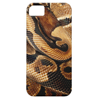snake lovers Ball Python iPhone SE/5/5s Case