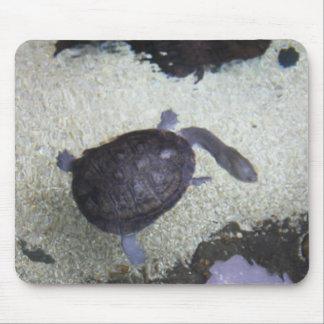 Snake Neck Turtle Mousepad #1