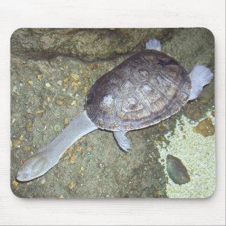 Snake Neck Turtle Mousepad #3