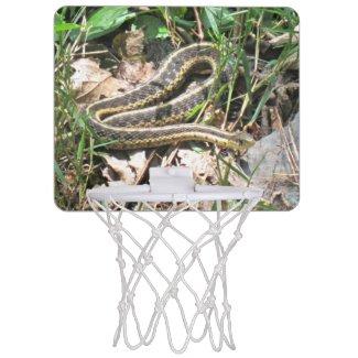 Snake on the Appalachian Trail. Mini Basketball Hoops