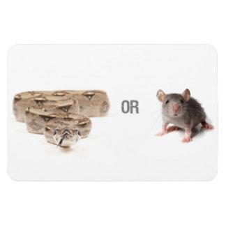 Snake or Mouse Magnet