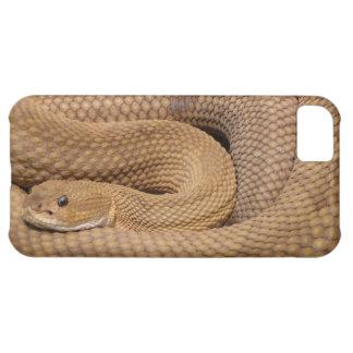 Snake Print Cellphone Case iPhone 5C Case