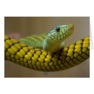 Snake Reptile Greeting Card