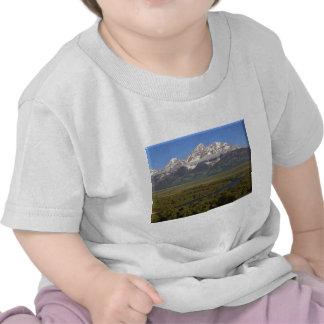 Snake River Grand Tetons Tshirts