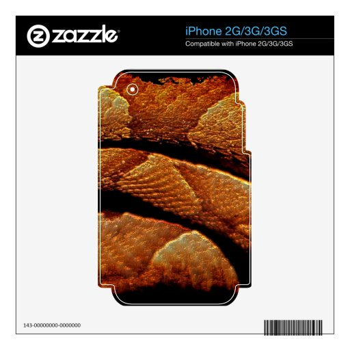 Snake Scale Serpent Scale Art Skin iPhone 3G Skins