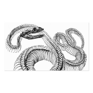 Snake Skeleton Double-Sided Standard Business Cards (Pack Of 100)