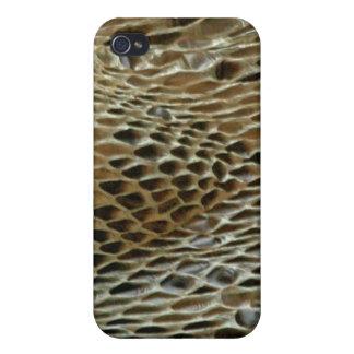 Snake Skin Boa2 iPhone 4 Cases