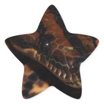 Snake Star Sticker