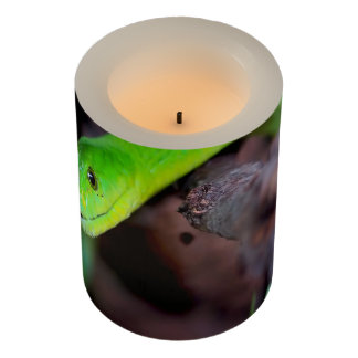 Snake Style Flameless Candle
