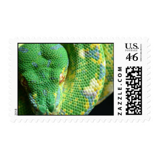 Snakes Green Tree Python Stamp