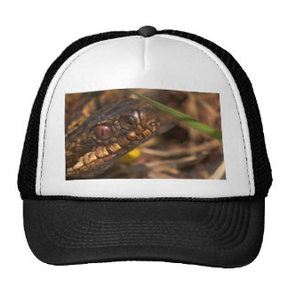 Snakes Head Hat