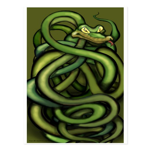Snakes Post Cards