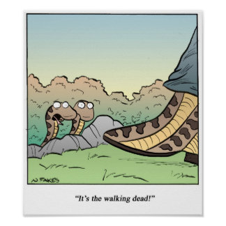 Snakes/Walking Dead Poster