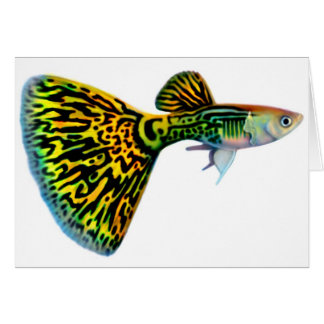 Snakeskin Cobra Guppy Card