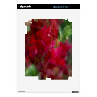 Snap Dragon Decal For The iPad 2