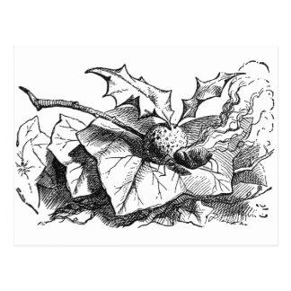 Snap Dragon Fly Post Card