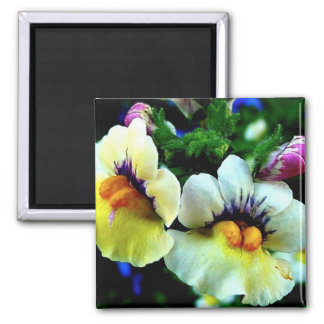 Snap Dragons 2 Inch Square Magnet