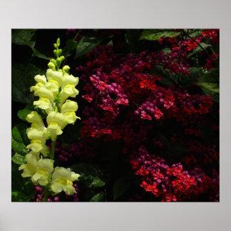Snapdragon and Pagoda Flowers Poster