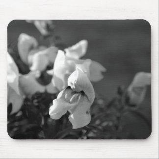 Snapdragon blanco y negro tapetes de ratones