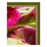 Snapdragon Blossom CloseUp PhotoPoster by gretchen Poster
