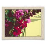 Snapdragon Bouquet Photo Print