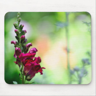 Snapdragon Flowers Mouse Pad