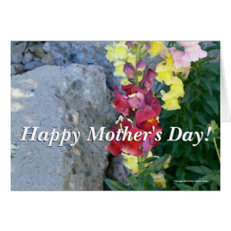 Snapdragon Mother's Day Card
