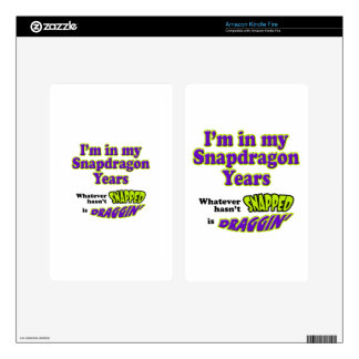 Snapdragon Years Kindle Fire Decals