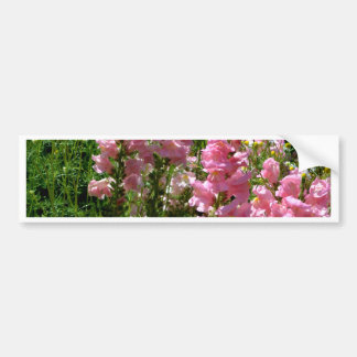 Snapdragons and Chamomile Bumper Sticker