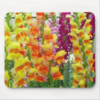 Snapdragons Colorful Floral Mouse Pad