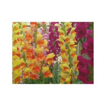 Snapdragons Colorful Floral Wood Poster