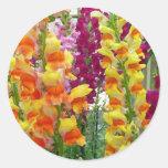 Snapdragons Floral Sticker
