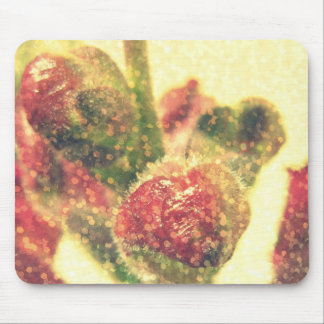 Snapdragons Mouse Pads