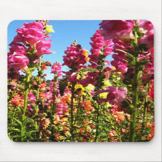 Snapdragons Mousepads