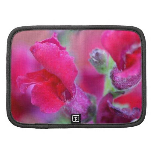 Snapdragons rosado vibrante planificadores