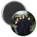 Snape Hermoine Ron Harry Magnets