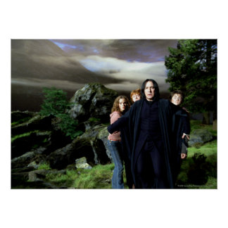 Snape Hermoine Ron Harry Poster