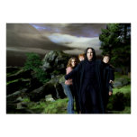 Snape Hermoine Ron Harry Posters