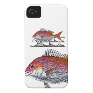 snappers - tribal waves iPhone 4 case