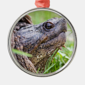 Snapping Turtle Metal Ornament