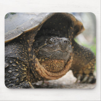 Snapping Turtle Mouse Pad