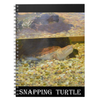 Snapping Turtle (New York) Note Book
