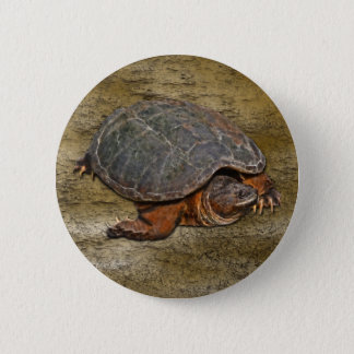 Snapping Turtle Terrapin-lover Gift Pinback Button