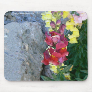 Snaps on the Rocks Mouse Pad