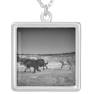 Snapshot of a Dog Race Square Pendant Necklace