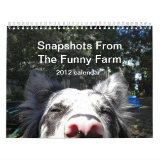 Snapshots From The Funny Farm 2012 calendar