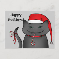 Snarky funny Christmas cat gray Holiday Postcard