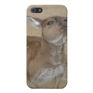 Snarky Wallaby Covers For iPhone 5