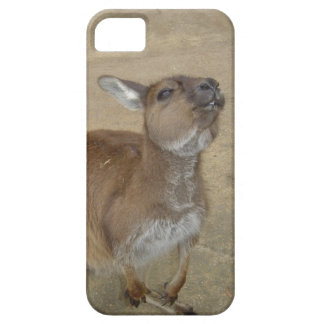Snarky Wallaby iPhone SE/5/5s Case