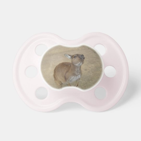 Snarky Wallaby Pacifier